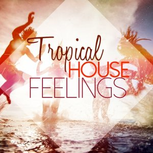 Tropical House Feelings (2015)