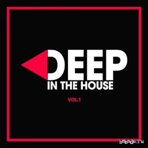 Deep in the House Vol.1 (2016)